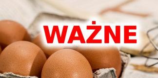 GIS ostrzega o jajach