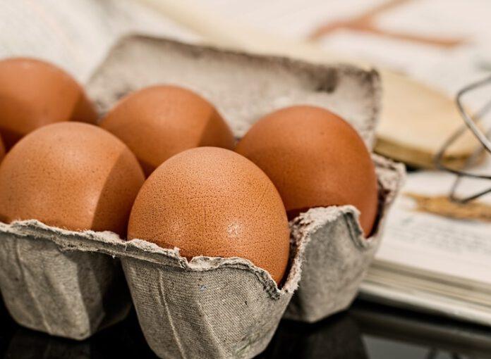 GIS jajka